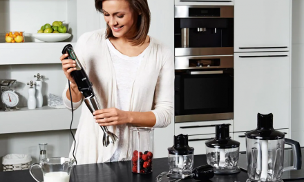 Jak vybrat tyčový mixér?